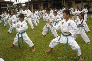 ujian-karate